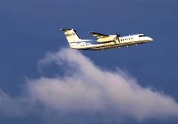 LOTUSさんが、関西国際空港で撮影した国土交通省 航空局 DHC-8-315Q Dash 8の航空フォト(飛行機 写真・画像)