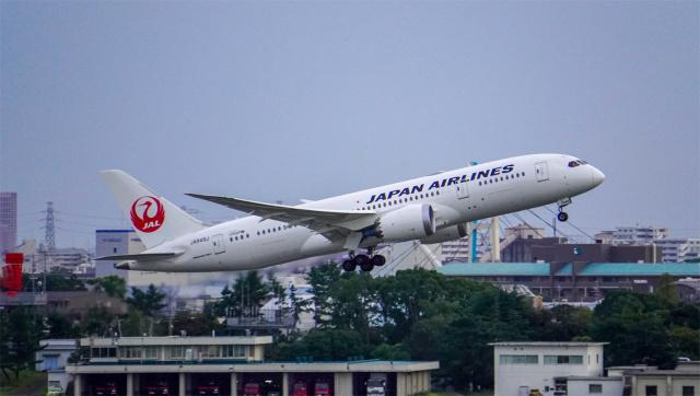 nanananatsukiさんが、伊丹空港で撮影した日本航空 787-8 Dreamlinerの航空フォト(飛行機 写真・画像)