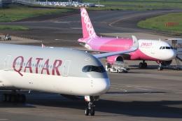 Hiro-hiroさんが、成田国際空港で撮影したカタール航空 A350-1041の航空フォト(飛行機 写真・画像)