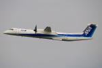 kuraykiさんが、羽田空港で撮影したANAウイングス DHC-8-402Q Dash 8の航空フォト(飛行機 写真・画像)