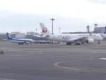 蒲田っ子さんが、羽田空港で撮影した日本航空 A350-941の航空フォト(飛行機 写真・画像)