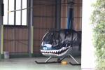 KAZFLYERさんが、布施へリポートで撮影した日本法人所有 R44 IIの航空フォト(飛行機 写真・画像)