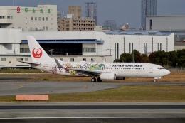 flying_horseさんが、伊丹空港で撮影した日本航空 737-846の航空フォト(飛行機 写真・画像)