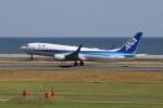 動物村猫君さんが、大分空港で撮影した全日空 737-881の航空フォト(飛行機 写真・画像)