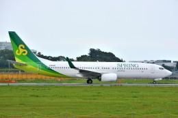 サンドバンクさんが、成田国際空港で撮影した春秋航空日本 737-8ALの航空フォト(飛行機 写真・画像)