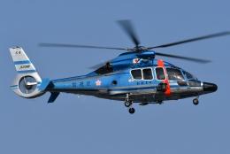 ブルーさんさんが、東京ヘリポートで撮影した警視庁 EC155B1の航空フォト(飛行機 写真・画像)