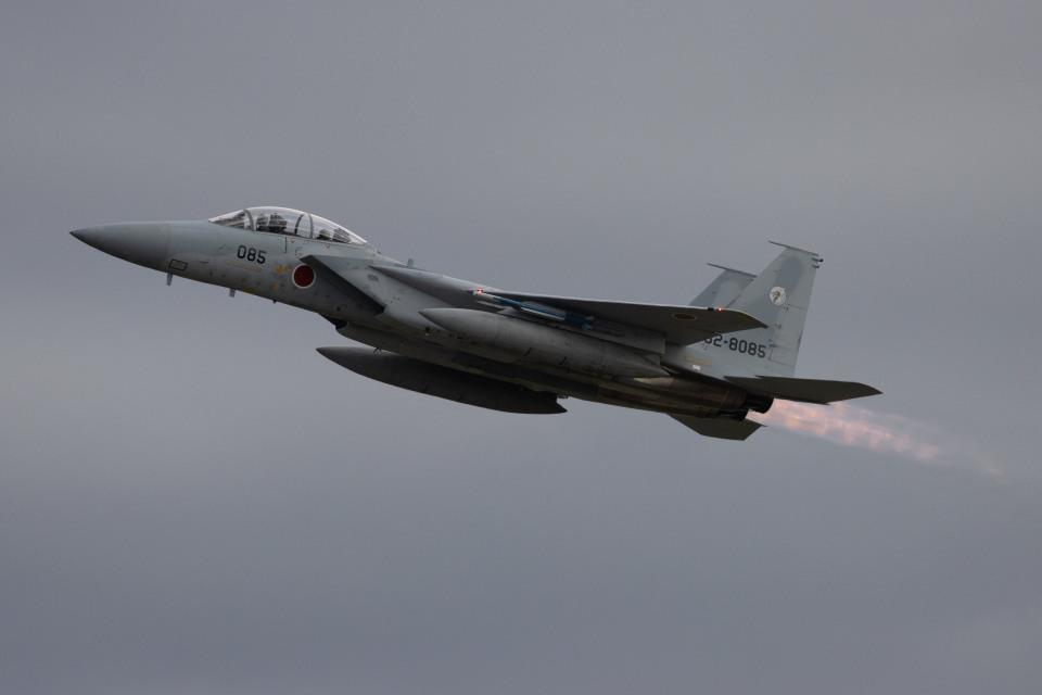 チャッピー・シミズさんの航空自衛隊 Mitsubishi F-15DJ Eagle (32-8085) 航空フォト