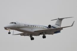 キャスバルさんが、フェニックス・スカイハーバー国際空港で撮影したアメリカ企業所有 EMB-135BJ Legacyの航空フォト(飛行機 写真・画像)
