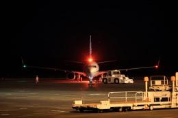 julyさんが、鳥取空港で撮影した全日空 737-8ALの航空フォト(飛行機 写真・画像)