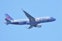 jutenLCFさんが、中部国際空港で撮影した長竜航空 A320-214の航空フォト(飛行機 写真・画像)
