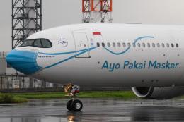 kuraykiさんが、羽田空港で撮影したガルーダ・インドネシア航空 A330-941の航空フォト(飛行機 写真・画像)