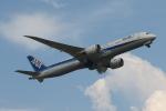 サリーちゃんのパパさんが、羽田空港で撮影した日本航空 787-8 Dreamlinerの航空フォト(飛行機 写真・画像)