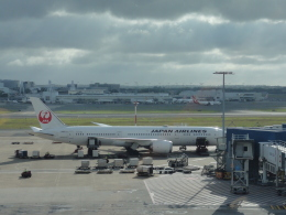 sunrise21さんが、シドニー国際空港で撮影した日本航空 787-9の航空フォト(飛行機 写真・画像)