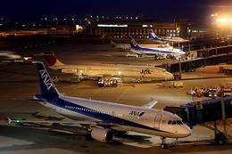Koenig117さんが、中部国際空港で撮影した全日空 A320-214の航空フォト(飛行機 写真・画像)