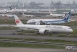 サリーちゃんのパパさんが、羽田空港で撮影した日本航空 787-9の航空フォト(飛行機 写真・画像)