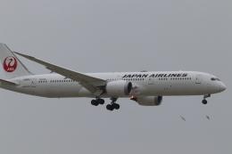 あっきー (汚写真)さんが、羽田空港で撮影した日本航空 787-9の航空フォト(飛行機 写真・画像)