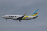 aki@ヒコーキ大好き少年さんが、羽田空港で撮影したAIR DO 737-781の航空フォト(飛行機 写真・画像)