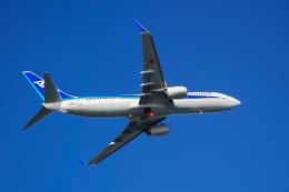 サボリーマンさんが、高知空港で撮影した全日空 737-881の航空フォト(飛行機 写真・画像)
