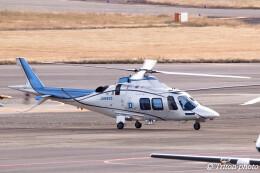 triton@blueさんが、名古屋飛行場で撮影した日本デジタル研究所(JDL) AW109SPの航空フォト(飛行機 写真・画像)