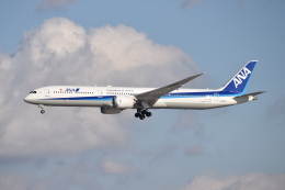 turenoアカクロさんが、成田国際空港で撮影した全日空 787-10の航空フォト(飛行機 写真・画像)