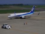 bannigsさんが、新潟空港で撮影した全日空 737-881の航空フォト(飛行機 写真・画像)