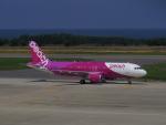 bannigsさんが、新潟空港で撮影したピーチ A320-214の航空フォト(飛行機 写真・画像)