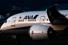 Kenny600mmさんが、伊丹空港で撮影した全日空 787-8 Dreamlinerの航空フォト(飛行機 写真・画像)
