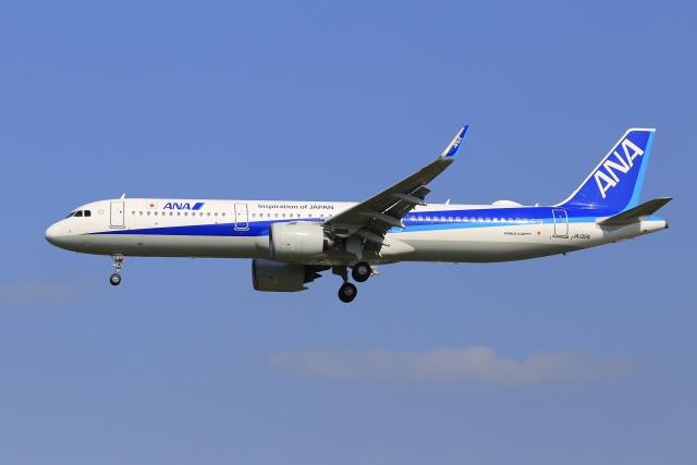 航空フォト:JA132A 全日空