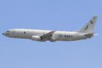 キイロイトリさんが、嘉手納飛行場で撮影したアメリカ海軍 P-8A (737-8FV)の航空フォト(飛行機 写真・画像)