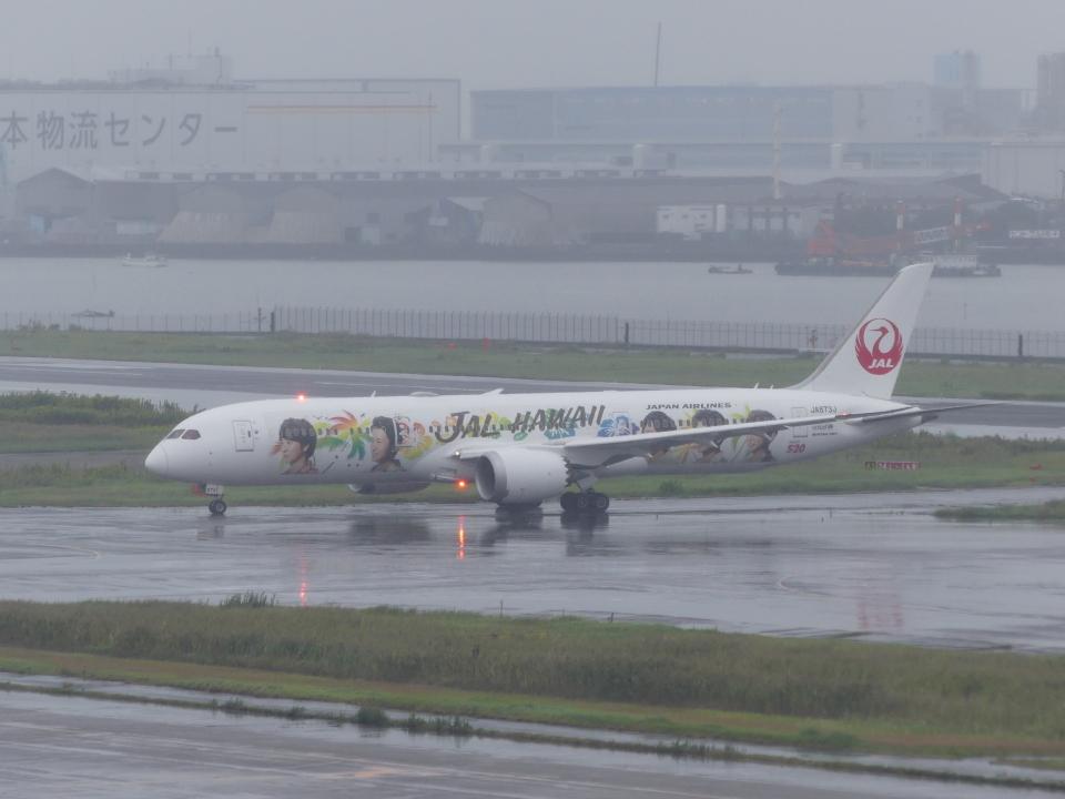 蒲田っ子さんの日本航空 Boeing 787-9 (JA873J) 航空フォト