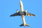 T.Sazenさんが、伊丹空港で撮影したジェイエア ERJ-170-100 (ERJ-170STD)の航空フォト(飛行機 写真・画像)