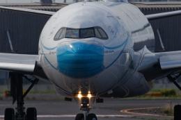 多摩川崎2Kさんが、羽田空港で撮影したガルーダ・インドネシア航空 A330-941の航空フォト(飛行機 写真・画像)