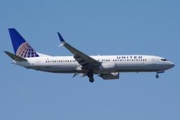 zettaishinさんが、ジェネラル・エドワード・ローレンス・ローガン国際空港で撮影したユナイテッド航空 737-824の航空フォト(飛行機 写真・画像)