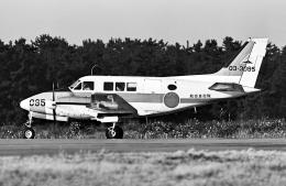 A-330さんが、小松空港で撮影した航空自衛隊 B65 Queen Airの航空フォト(飛行機 写真・画像)