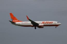 kahluamilkさんが、成田国際空港で撮影したチェジュ航空 737-8K5の航空フォト(飛行機 写真・画像)