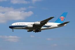 OMAさんが、成田国際空港で撮影した中国南方航空 A380-841の航空フォト(飛行機 写真・画像)