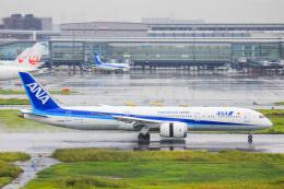 かっちゃん✈︎さんが、羽田空港で撮影した全日空 787-9の航空フォト(飛行機 写真・画像)