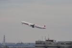 サリーちゃんのパパさんが、羽田空港で撮影した航空自衛隊 777-3SB/ERの航空フォト(飛行機 写真・画像)