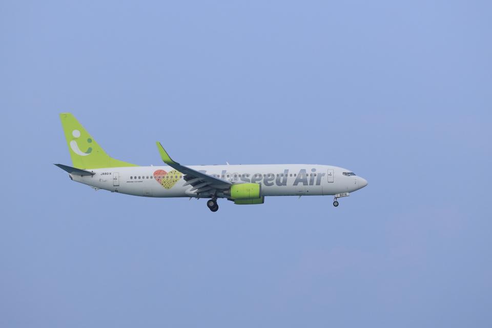 さんたまるたさんのソラシド エア Boeing 737-800 (JA801X) 航空フォト