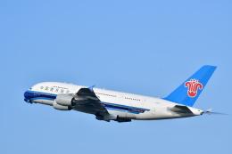 チョロ太さんが、成田国際空港で撮影した中国南方航空 A380-841の航空フォト(飛行機 写真・画像)