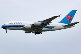 KoshiTomoさんが、成田国際空港で撮影した中国南方航空 A380-841の航空フォト(飛行機 写真・画像)