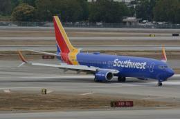 小弦さんが、ノーマン・Y・ミネタ・サンノゼ国際空港で撮影したサウスウェスト航空 737-8H4の航空フォト(飛行機 写真・画像)