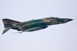 ちゅういちさんが、入間飛行場で撮影した航空自衛隊 RF-4E Phantom IIの航空フォト(飛行機 写真・画像)