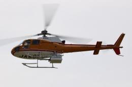 Zakiyamaさんが、熊本空港で撮影した東邦航空 AS350B Ecureuilの航空フォト(飛行機 写真・画像)