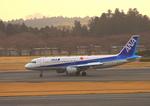 ふじいあきらさんが、成田国際空港で撮影した全日空 A320-211の航空フォト(写真)