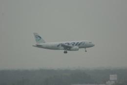 ガペ兄さんが、フランクフルト国際空港で撮影したアドリア航空 A319-132の航空フォト(飛行機 写真・画像)