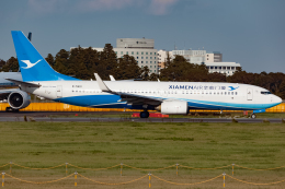 KoshiTomoさんが、成田国際空港で撮影した厦門航空 737-86Nの航空フォト(飛行機 写真・画像)