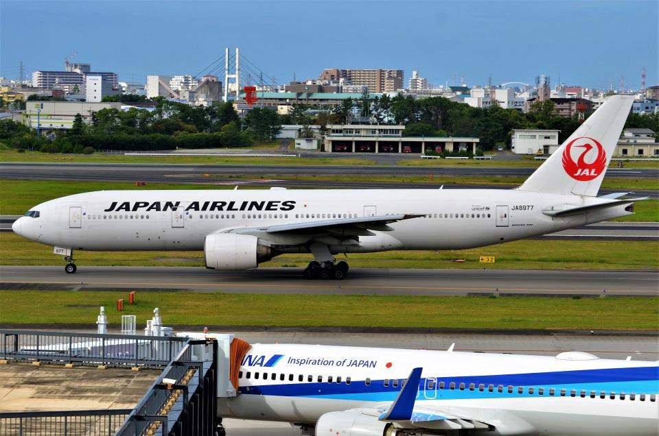 amagoさんの日本航空 Boeing 777-200 (JA8977) 航空フォト