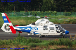 Chofu Spotter Ariaさんが、調布飛行場で撮影した東邦航空 SA365N1 Dauphin 2の航空フォト(飛行機 写真・画像)