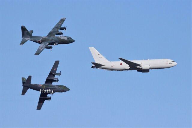 Hottyさんが、名古屋飛行場で撮影した航空自衛隊 C-130H Herculesの航空フォト(飛行機 写真・画像)